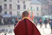 アマナマナ チベットからの聖なるおくりもの TheBlessing Card 情景3