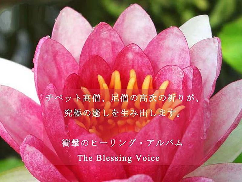 �A�}�i�}�i�@�`�x�b�g����̐��Ȃ邨������́@The Blessing Voice