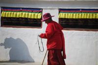 アマナマナ チベットからの聖なるおくりもの TheBlessing Card 風景