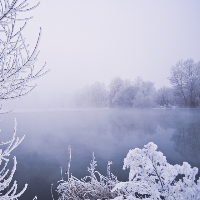winter_fog