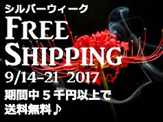 201709-shipping-free-top
