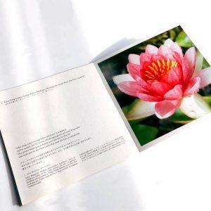 cd1_photobook