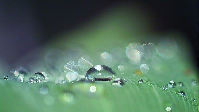 drop-of-water-3671613_640